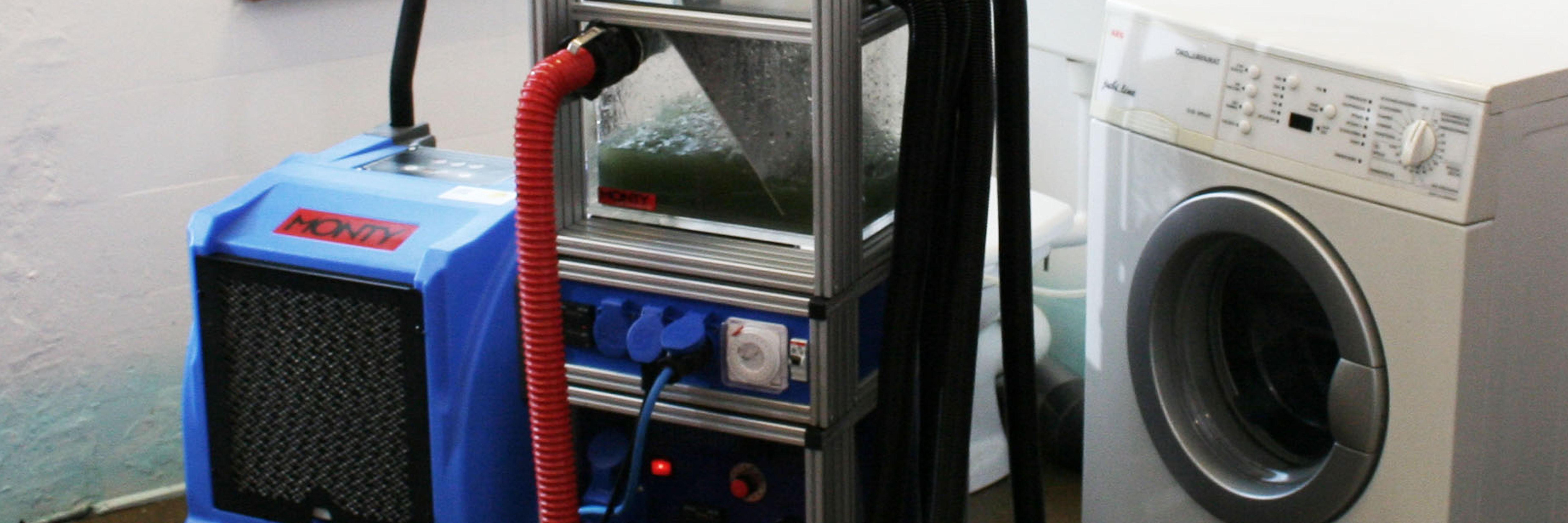 ImmobilienSchadenService-Webinar: Top aufgestellt bei Wasserschäden