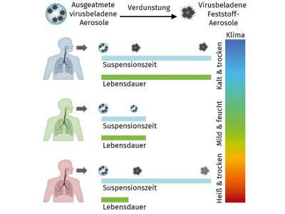 Metastudie: Vorteile für den Menschen bei mittlerer relativer Luftfeuchte